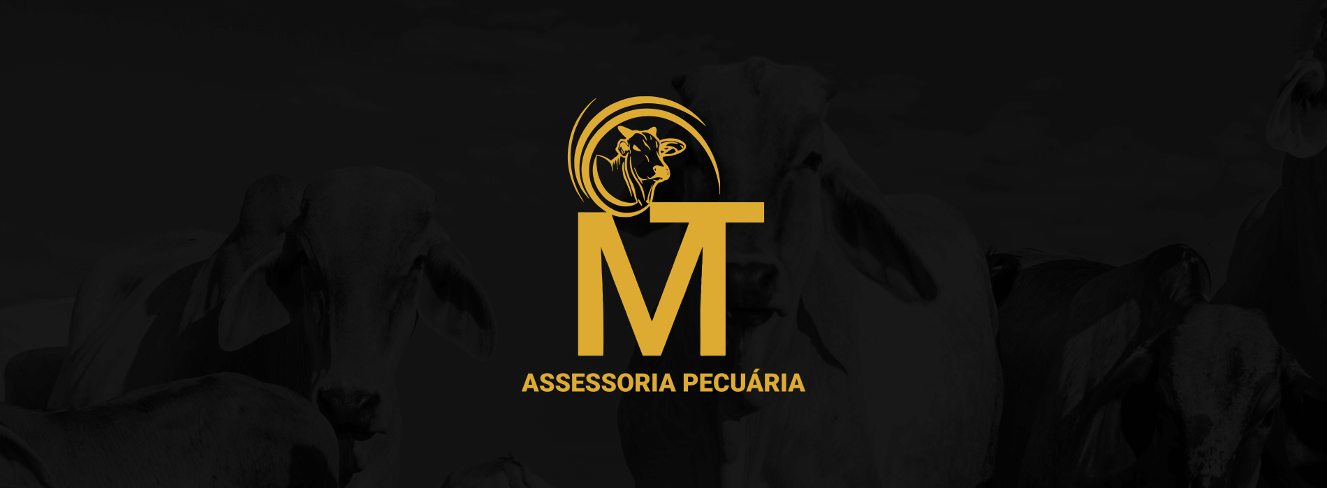 identidade_visual_branding_genius_marketing